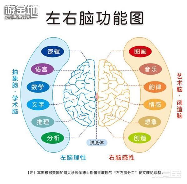 全脑教育第一阶段:超直觉感应训练