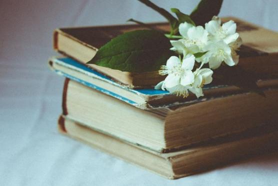 不可不读的人生三书 胜读百本经典