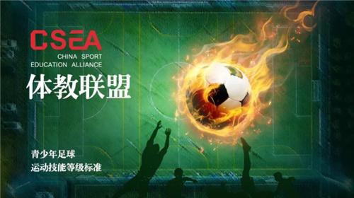 新一届全国青少年校园足球专家委员会成立