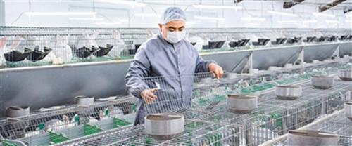 发扬传统农产品出口优势 青岛农产品出口额位居全国首位