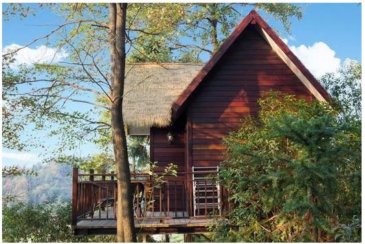 【智慧民宿】山野间的树屋、房车、鸟巢、帐篷