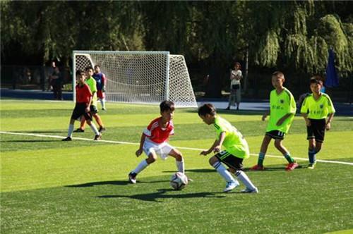 第十六届全国少儿足球邀请赛邀你来报名!