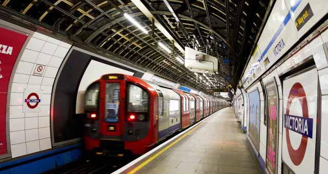 伦敦地铁多挤:人均空间不如牛羊
