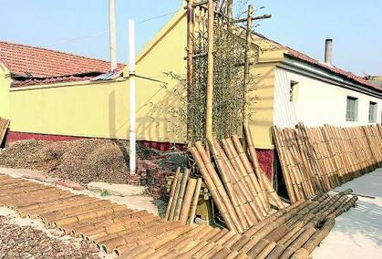 探寻电商力量:青岛生鲜农产品专营网店已达550余家