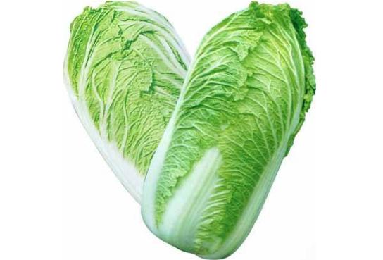 禧福集团国家地理标志保护农产品之胶州白菜——来自原产地的纯天然健康蔬菜
