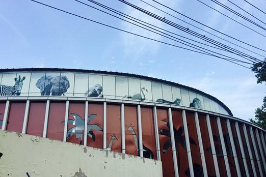 青岛贝林自然博物馆预计10月试运营