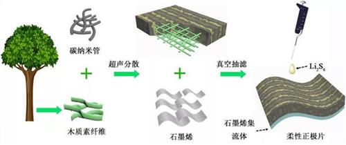 青岛生物能源与过程研究所用木质素研发出高性能锂硫电池