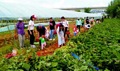 新兴职业农民培训  岛城培育百名现代青年农场主