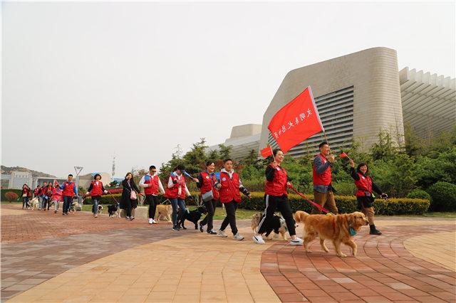 """真正的爱狗人士:50只宠物犬随主人游行宣传""""文明养犬"""""""