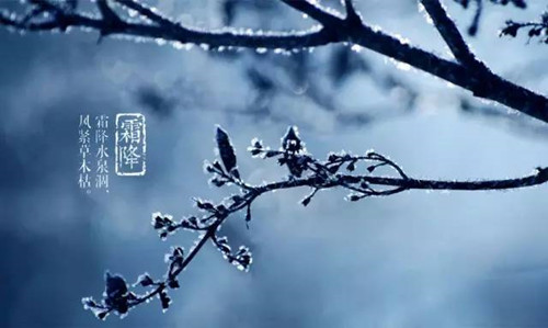 霜降节气习俗有哪些?