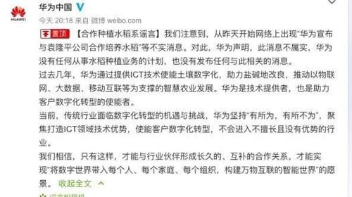 华为发表声明辟谣:未与袁隆平合作培养海水稻