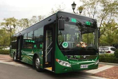 青岛将更新公交车914辆 推广新能源公交车的使用