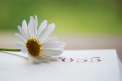 句句扎心—10句十分精辟的人生语录