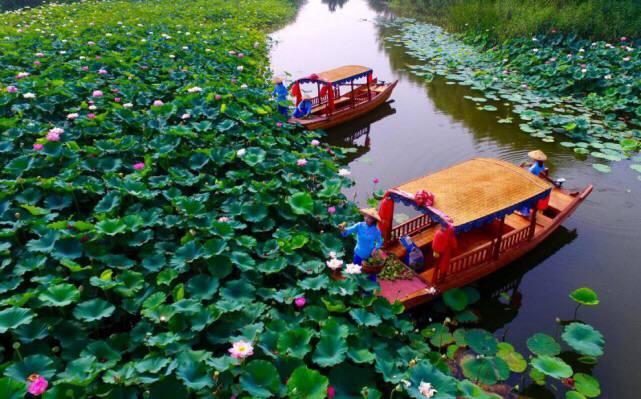 6月5日至11日,青岛人可免费游台儿庄