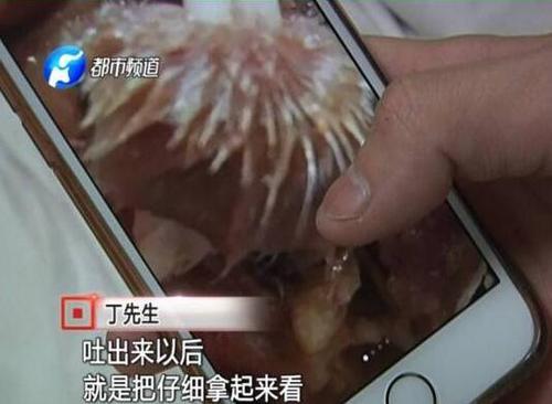 河南开封一男子吃黄焖鸡竟然吃出老鼠肉 还能不能好好的吃肉了