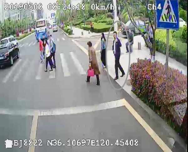 青岛公交车斑马线前礼让半分钟 市民伸大拇指点赞