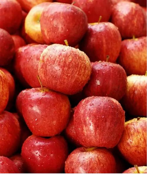 一年当中水果是要按月份吃的,三月就要吃这个!