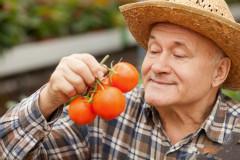 老人的体重和长寿息息相关