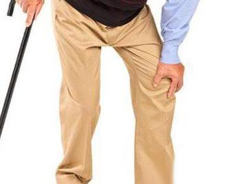 长寿秘诀:老年人怎么才能保持身体健康呢?