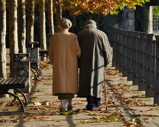 老年人对于家庭都有哪些重要性?