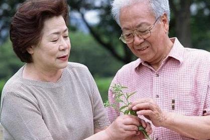 老年人常见病的饮食疗法