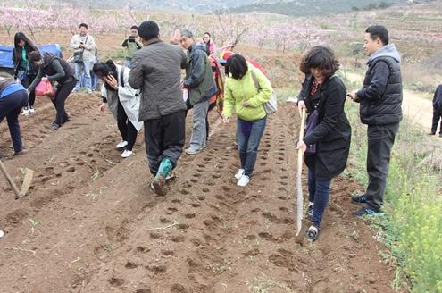 禧福农业推出农场免费认领活动 董事长单连忠呼吁关注农耕地安全