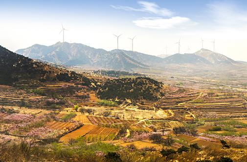 禧福农业:系统化产业结构  造就高品质产品