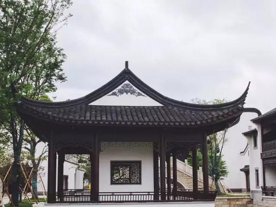 曾先国—翰墨传承中国书画名家走进新西塘越里