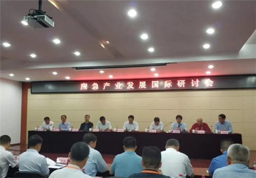 青岛市应急管理协会受邀参加应急产业发展国际研讨会